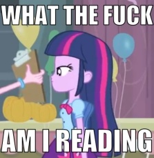 327038__safe_twilight-sparkle_image-macro_vulgar_equestria-girls_balloons