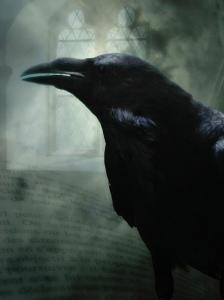 raven by oddstock